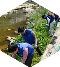 Environment Purification Activities