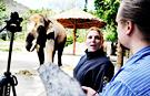 세계도 놀란 에버랜드「말하는 코끼리 코식이」