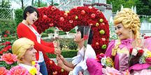 연인들이 가장 선호하는 장미 꽃 데이트 장소는?