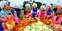삼성에버랜드가 한여름에 김장 담그는 이유는?