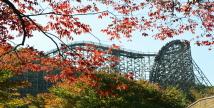 에버랜드, '오색 빛깔' 가을 단풍 나들이